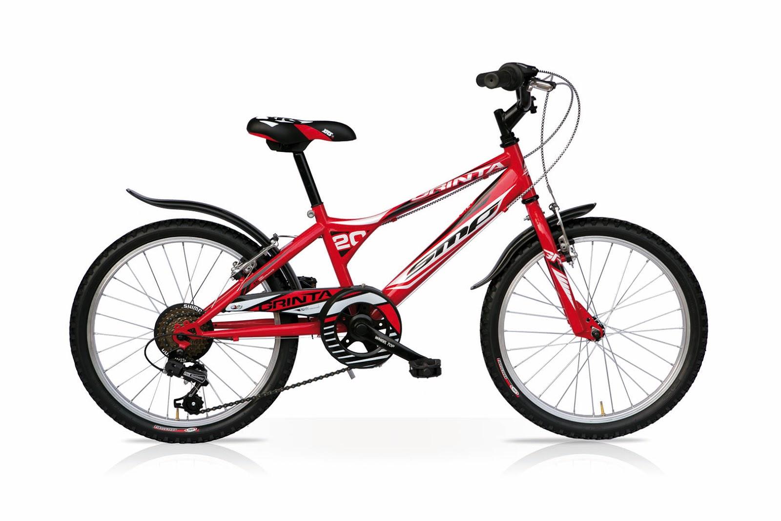 Venaria La Mandria - Bici small for kids